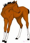 A Clip-art style drawing of a foal