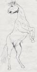 Rearing horse